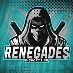 Renegades e-sports BR T8